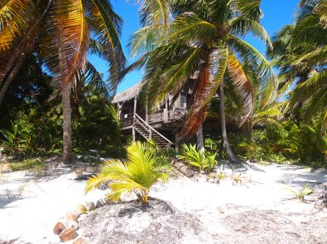Abandoned beach shack on Ambergris Caye