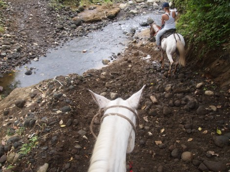 Ready to cross the rocky creek