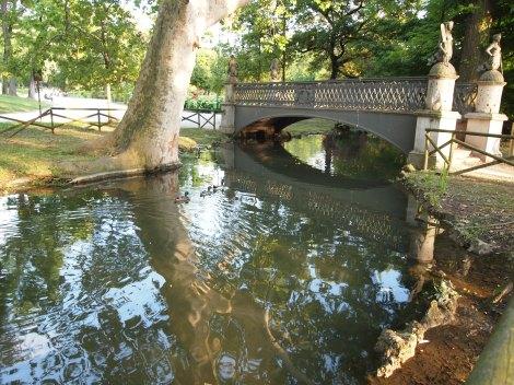 Mother duck leading her ducklings under a bridge