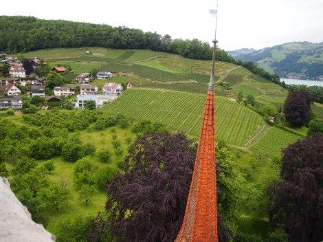 View from Schloss tower