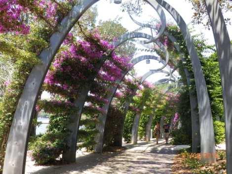 South Parklands gardens