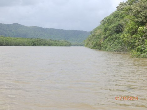 Rain-swollen Daintree River in Queensland wet tropics