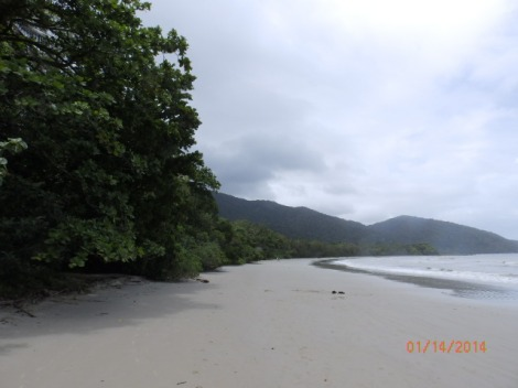 Beach on remote Cape Tribulation